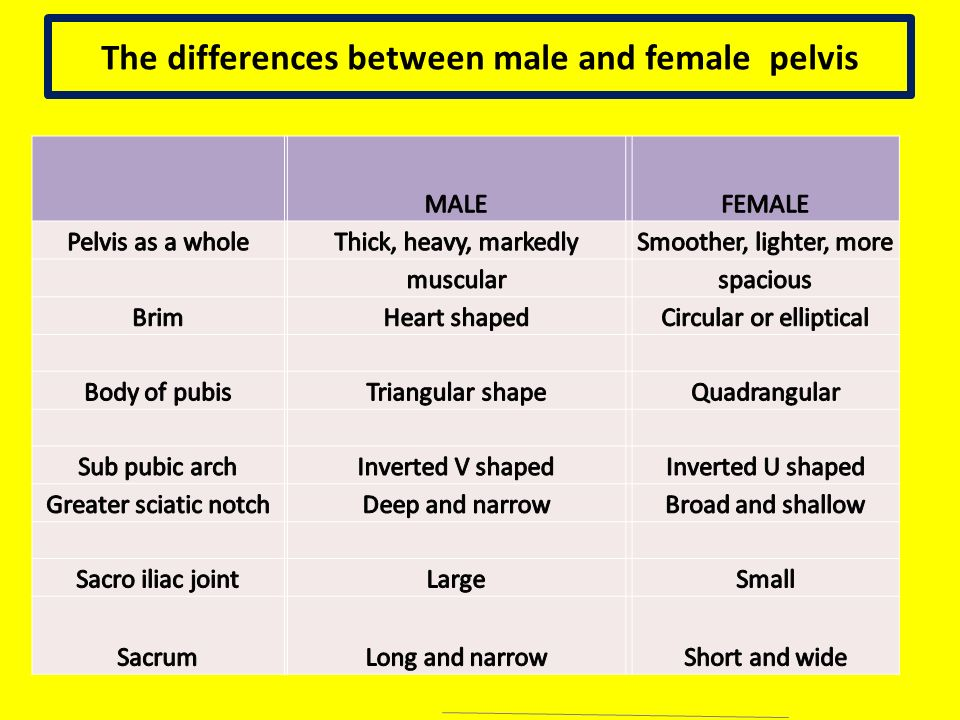 a comparison of men and womens abilities Comparison and contrast: communication between men and womencommunication is a very important factor in human life  communication between men and women.