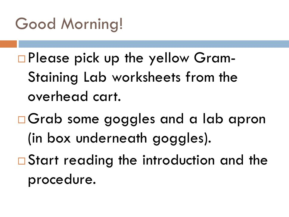 Good Morning! Please pick up the yellow Gram- Staining Lab ...