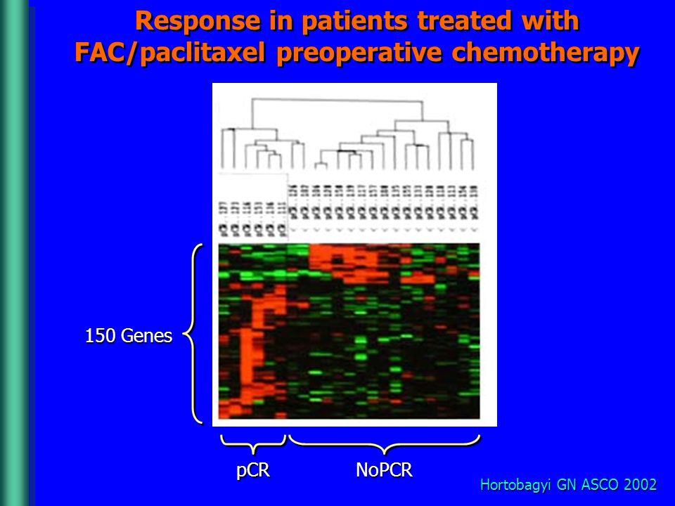 Response in patients treated with FAC/paclitaxel preoperative chemotherapy