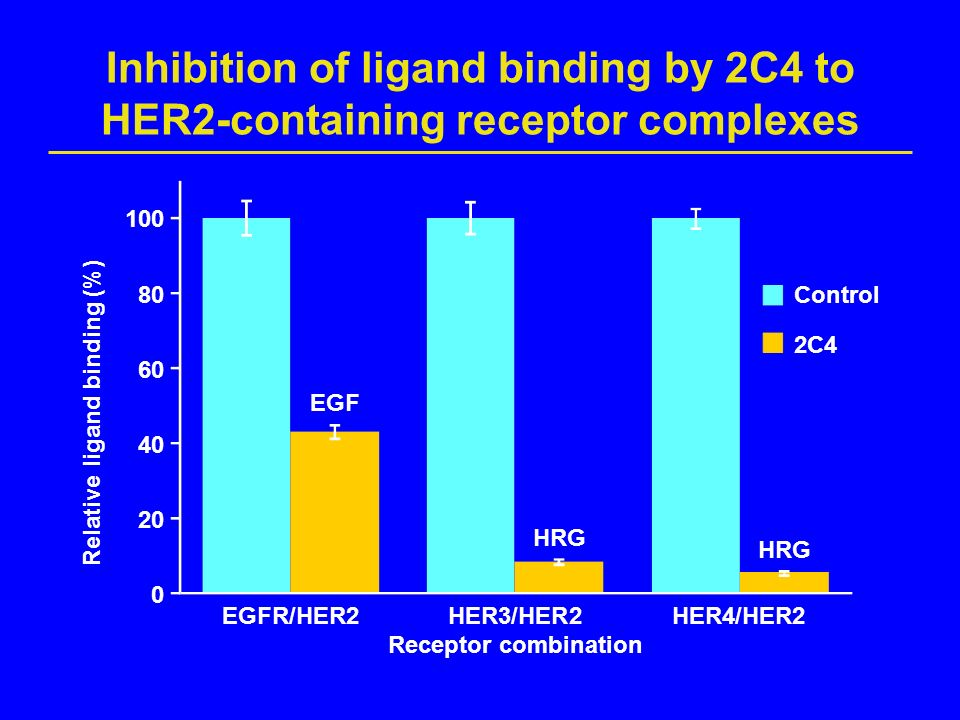 Inhibition of ligand binding by 2C4 to HER2-containing receptor complexes