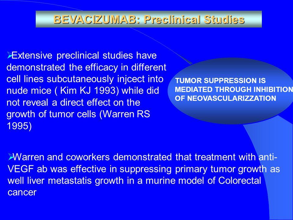 BEVACIZUMAB: Preclinical Studies