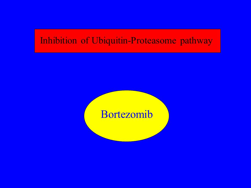 Inhibition of Ubiquitin-Proteasome pathway