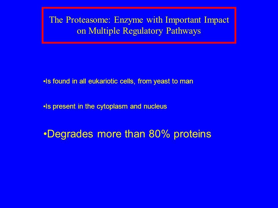 Degrades more than 80% proteins