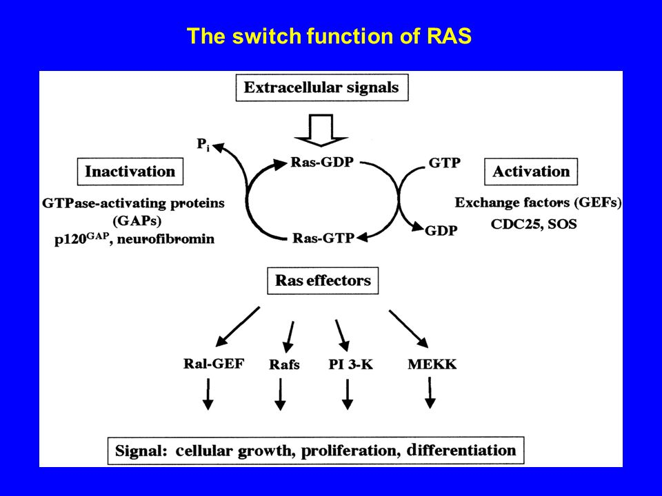 The switch function of RAS
