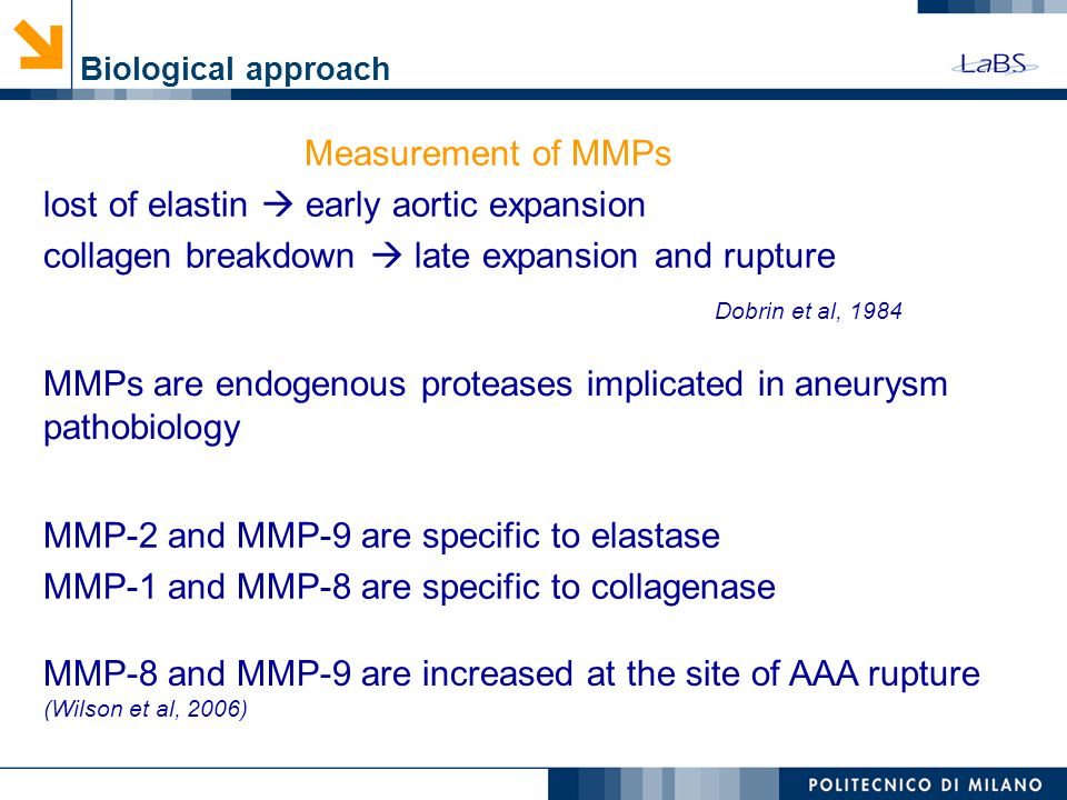 lost of elastin  early aortic expansion