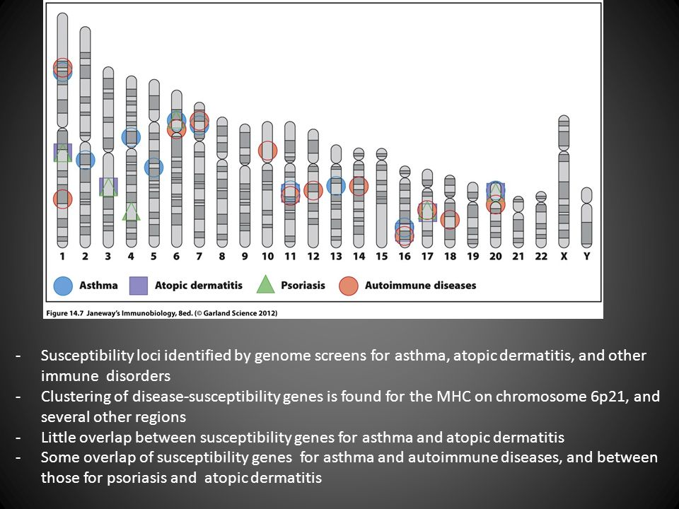 Susceptibility loci identified by genome screens for asthma, atopic dermatitis, and other immune disorders