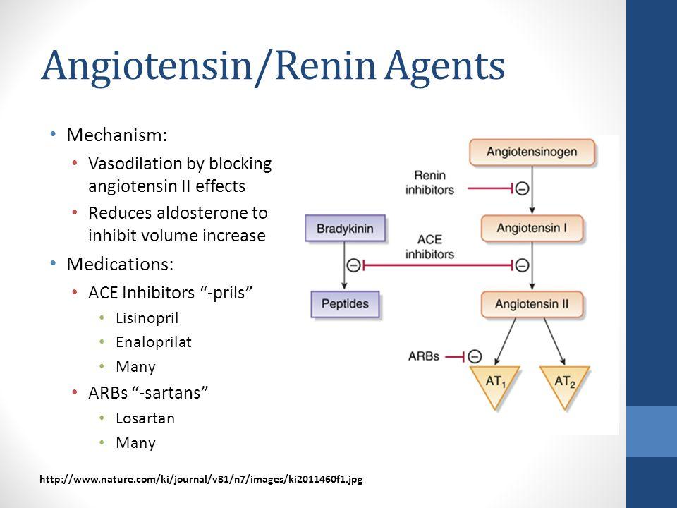 Angiotensin/Renin Agents