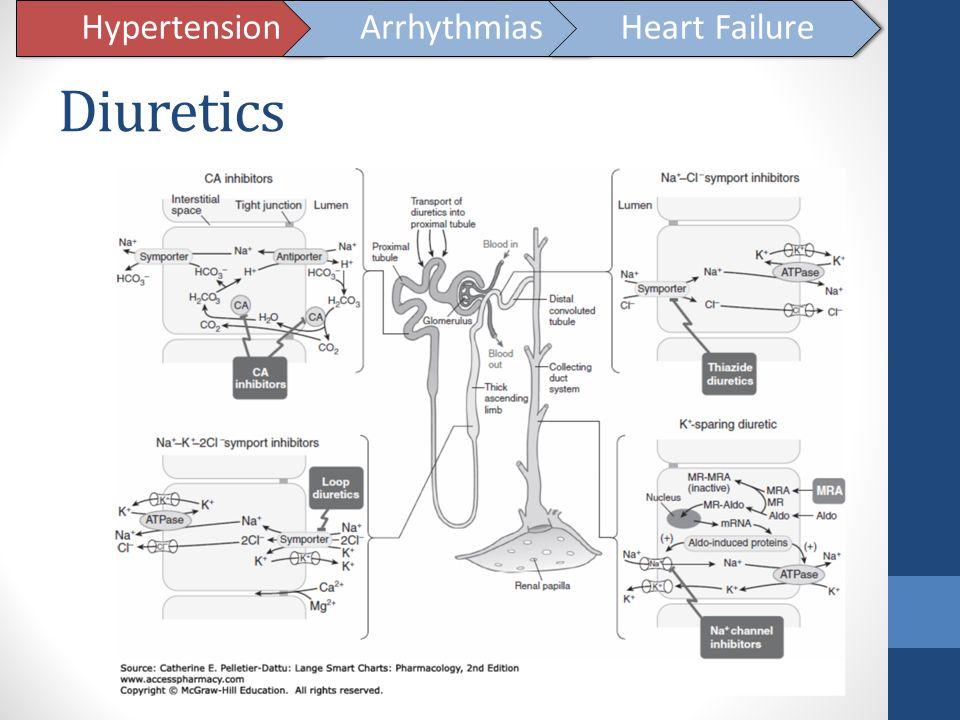 Hypertension Arrhythmias Heart Failure Diuretics