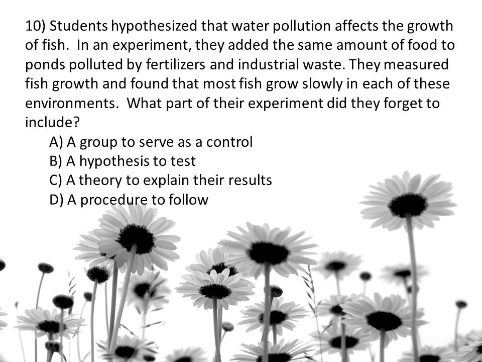 hypothesis about water pollution Hypothesis: it is hypothesized that stream _____ will have will have higher nutrient concentrations and therefore _______ water quality, than stream (stream a or b, poorer or higher.