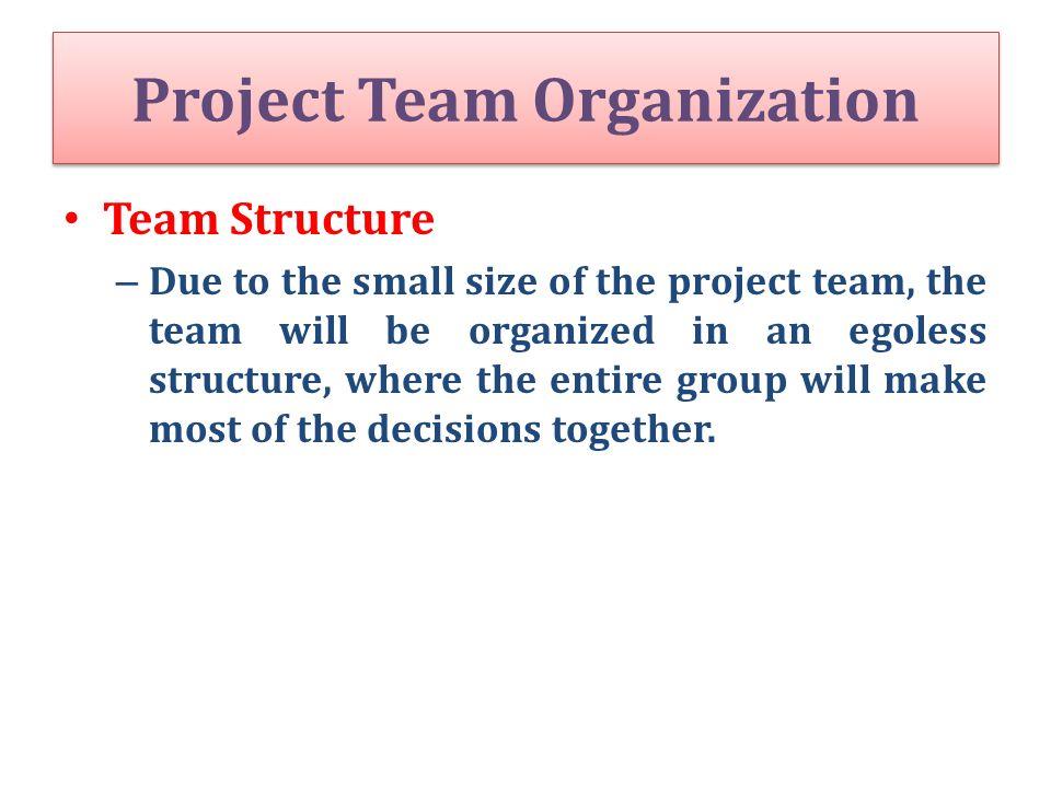 Project Team Organization