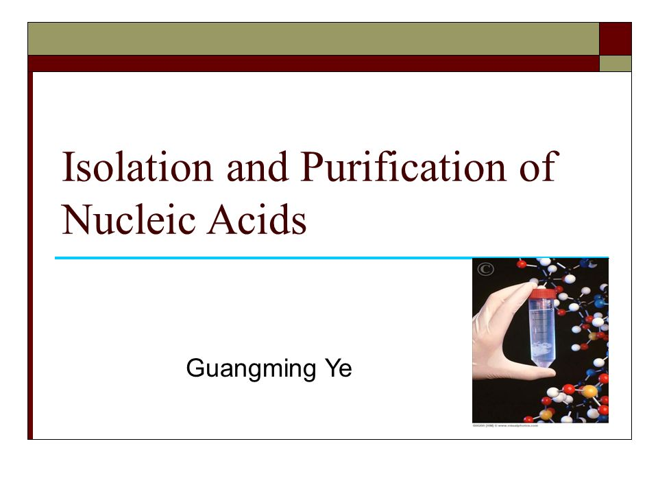 isolation and characterization of nucleic acids For extracting nucleic acid from swabs for characterization of bacterial  dna  and rna that can be isolated using the bead-beating protocol.