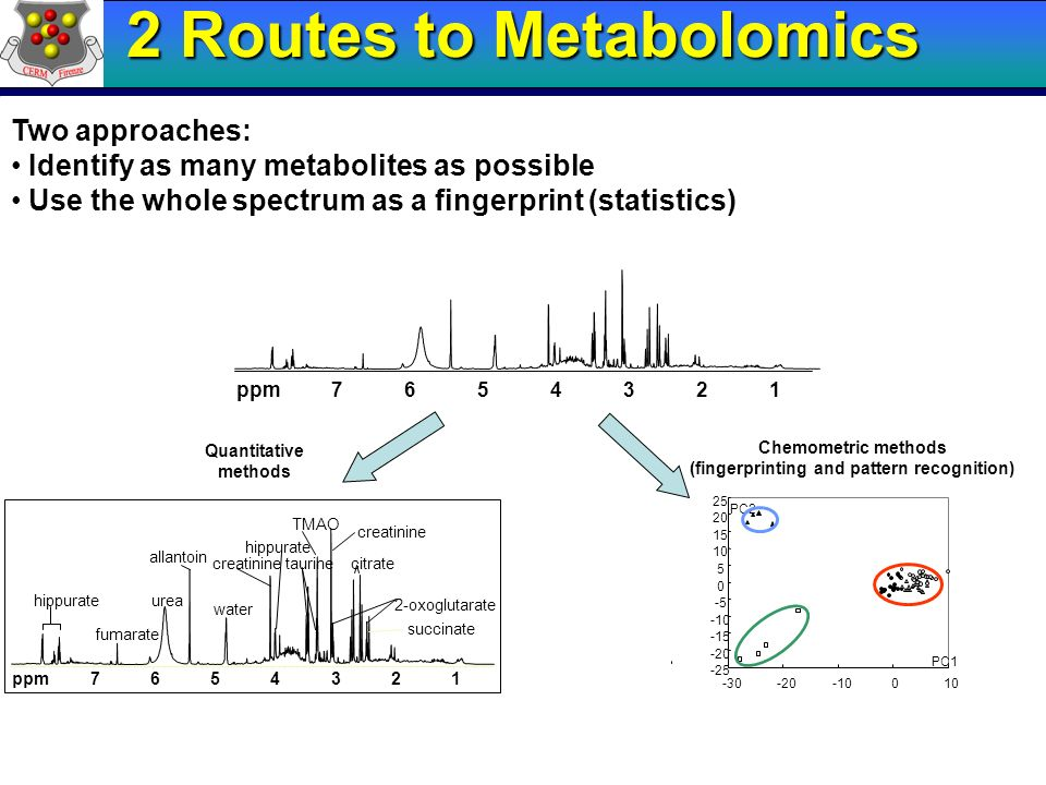 2 Routes to Metabolomics (fingerprinting and pattern recognition)