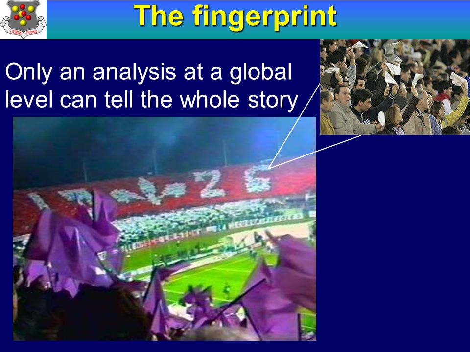 The fingerprint Only an analysis at a global level can tell the whole story 18