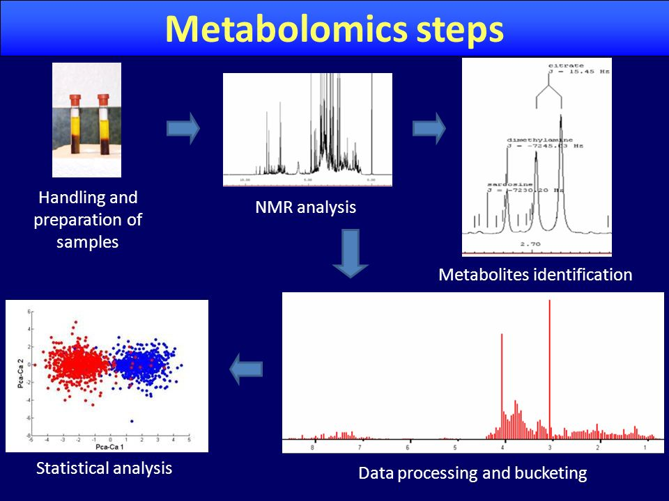 Metabolomics steps Handling and preparation of samples NMR analysis
