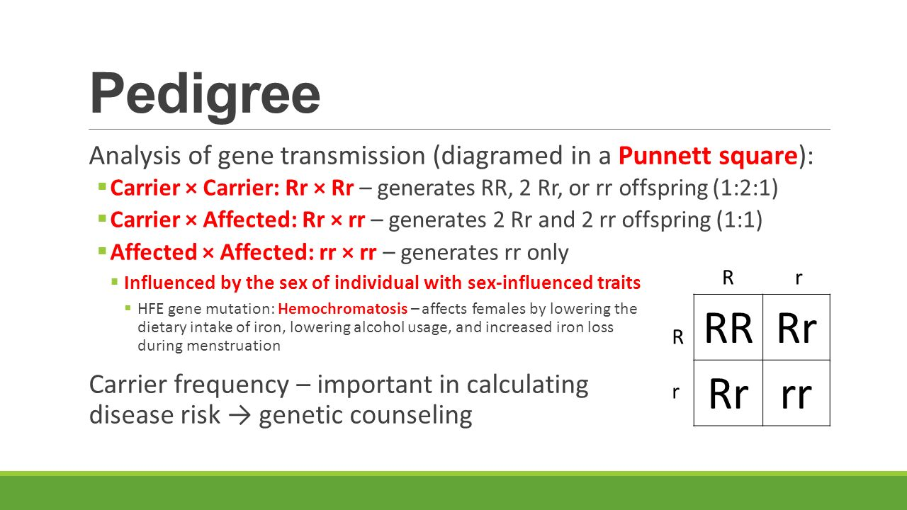 Introduction to the Human chromosome - ppt download