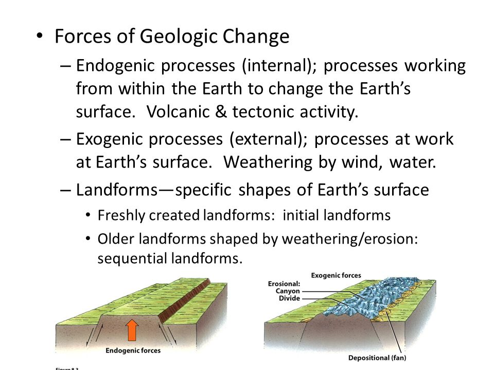 geological forces that shape the earth essay The earth is shaped by many different geological processes processes that are  caused by forces from within the earth are endogenous processes.