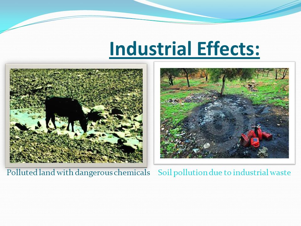 soil pollution and soil waste management Plastic pollution in soil susanna gionfra  waste, plastics reaches our soils through increasing use  tion, consumption and waste management practices remain.