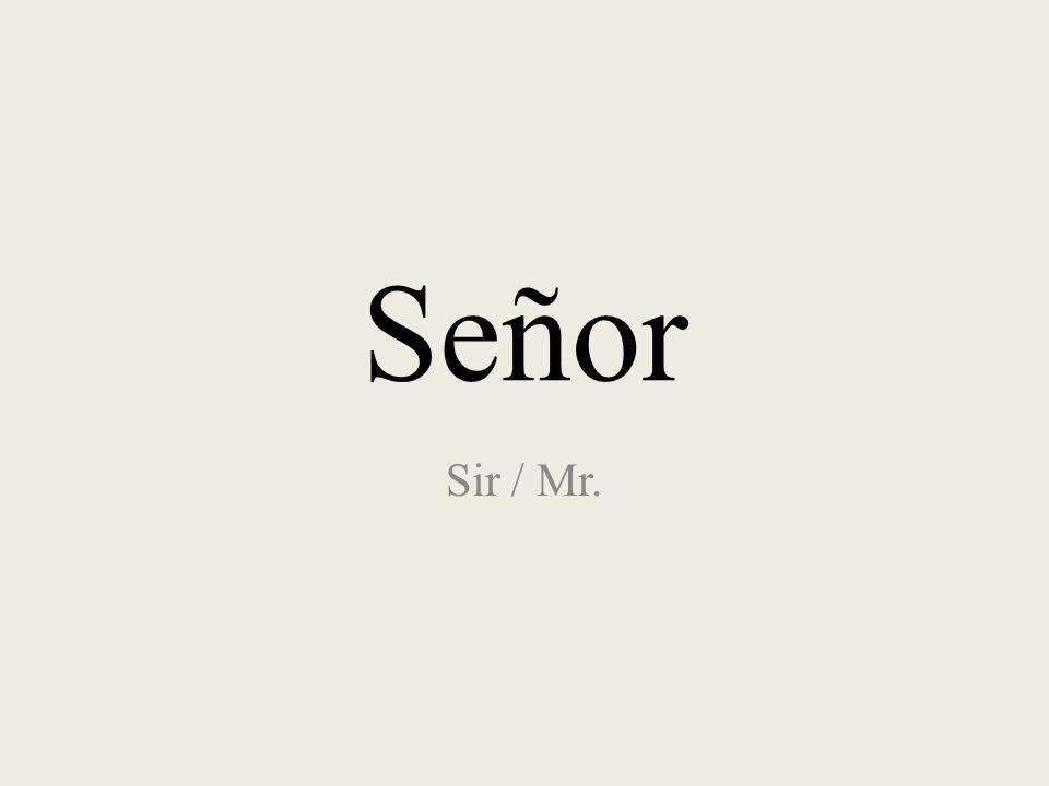 Señor Sir / Mr.