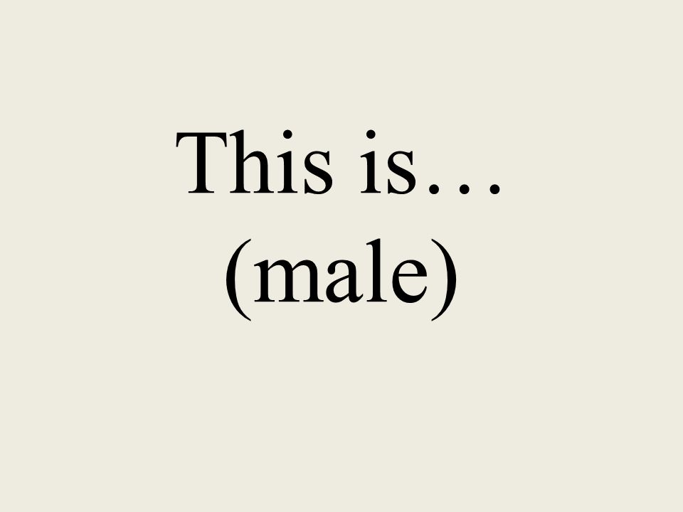 This is… (male)