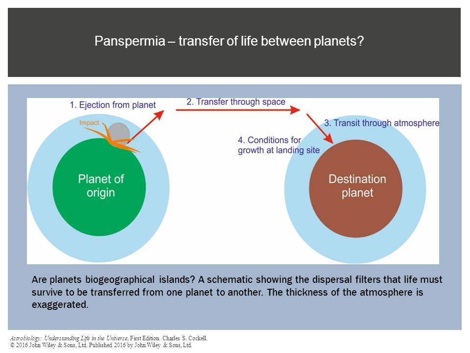 Panspermia – transfer of life between planets
