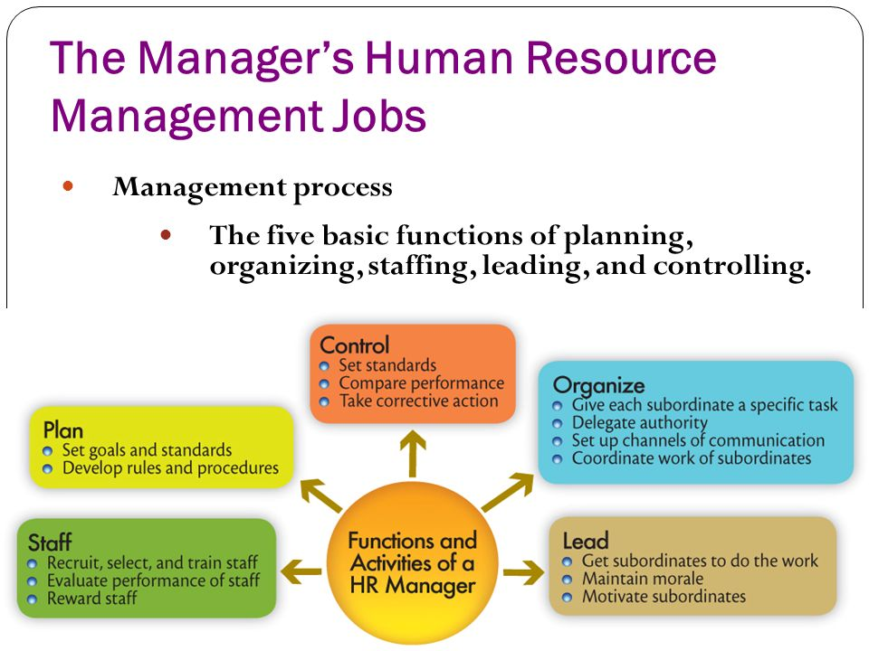 "employee career management plan hrm Human resource management, v ""a balanced plan for career opportunities are identified and created to help the employee in the career."