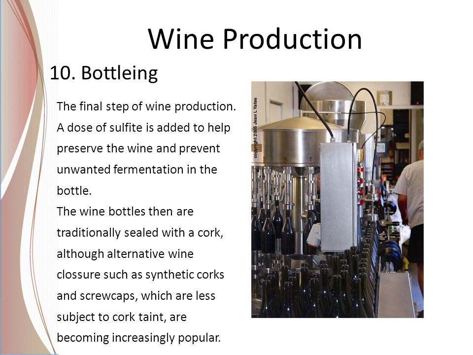 Wine Production 10. Bottleing The final step of wine production.