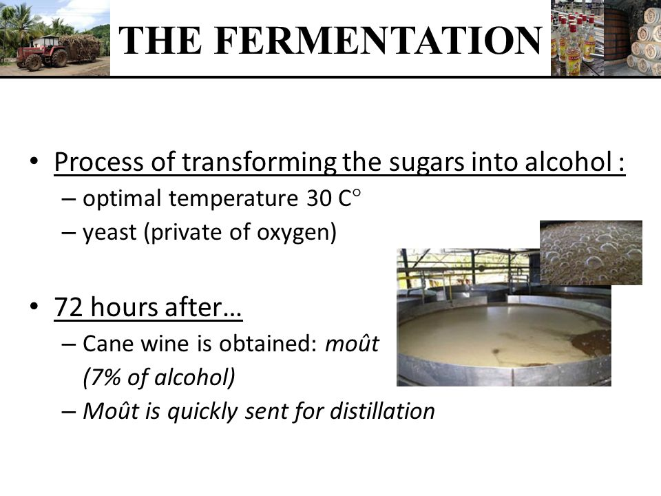THE FERMENTATION Process of transforming the sugars into alcohol :