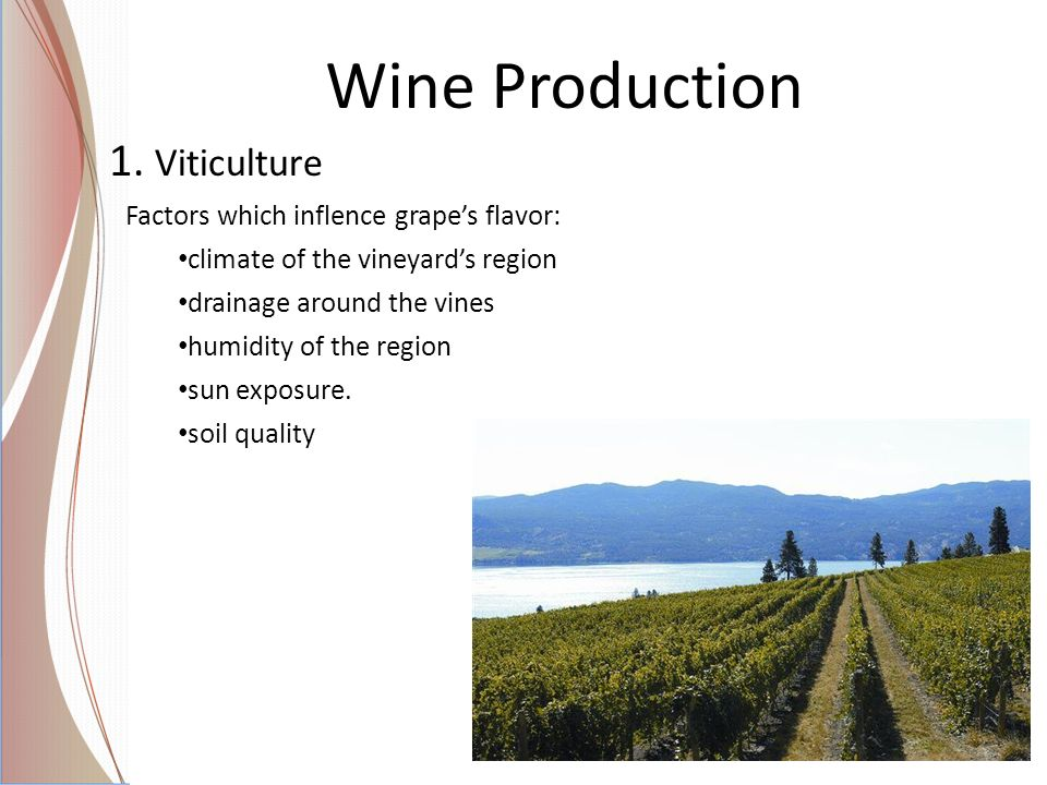 Wine Production 1. Viticulture Factors which inflence grape's flavor: