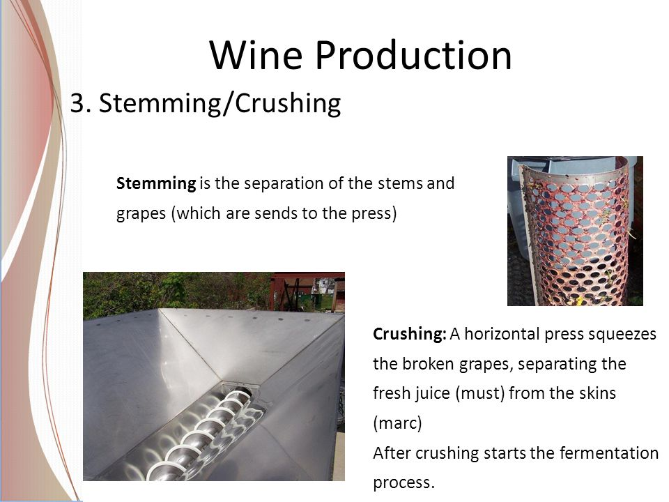 Wine Production 3. Stemming/Crushing