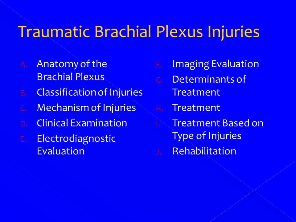 Berhmt Applied Anatomy Of Brachial Plexus Fotos Menschliche