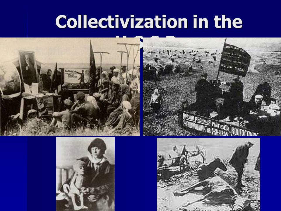 Collectivization in the U.S.S.R.