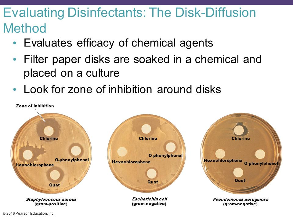 Determine disinfectant and antiseptic effectiveness using zone inhibition method