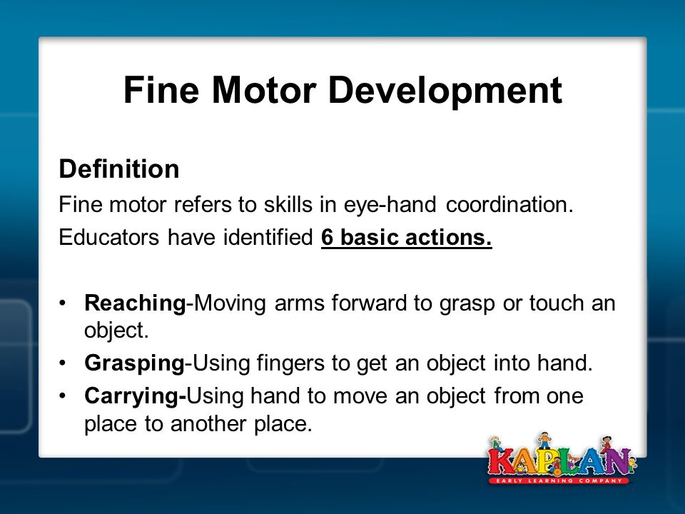 Fine Motor Development Workshop Ppt Video Online Download
