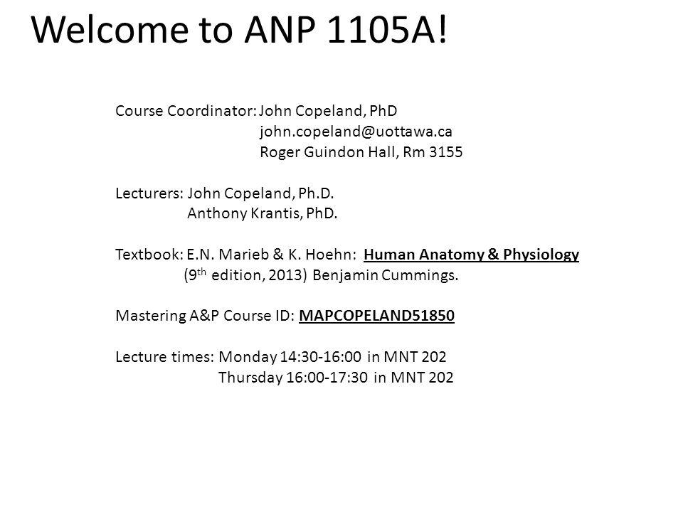 Welcome to ANP 1105A! Course Coordinator: John Copeland, PhD - ppt ...
