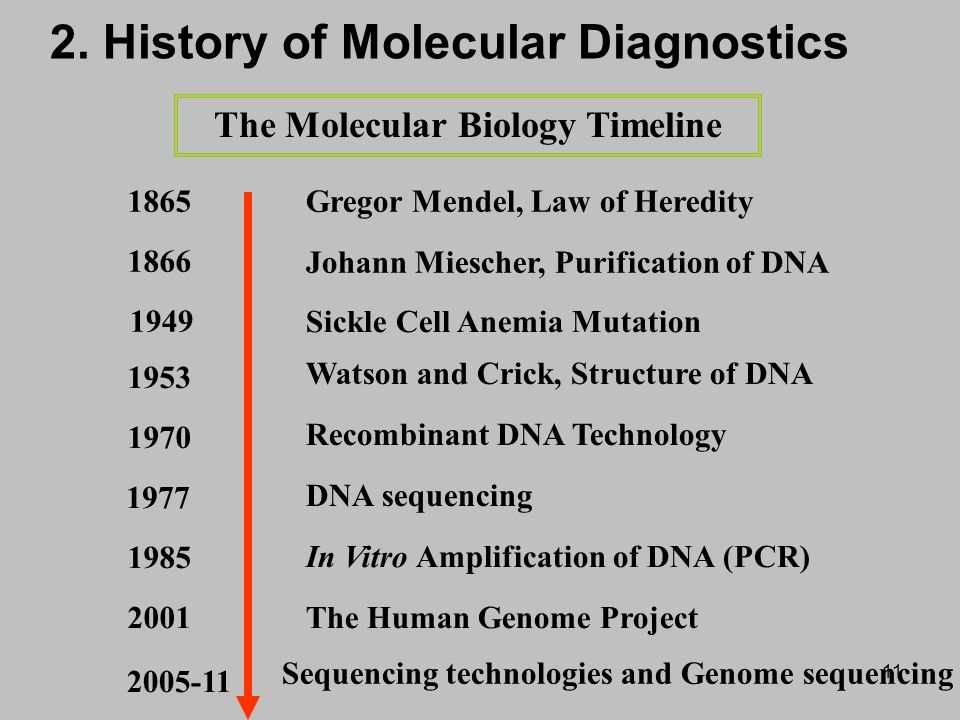 molecular biology and gene technology assignment It deliberately covers a broad range of topics to show that molecular biology  reproduction, and gene transfer later chapters cover topics such as molecular.