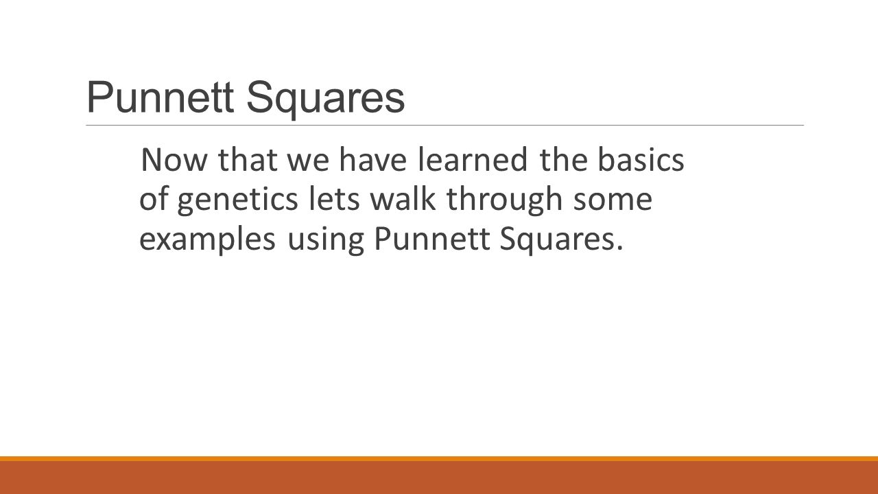 Completing The Square 37 Punnett Squares Now That We Have Learned The  Basics Of Genetics Lets