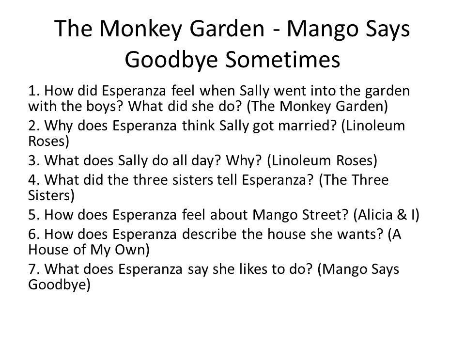 the monkey garden by sandra cisneros essay