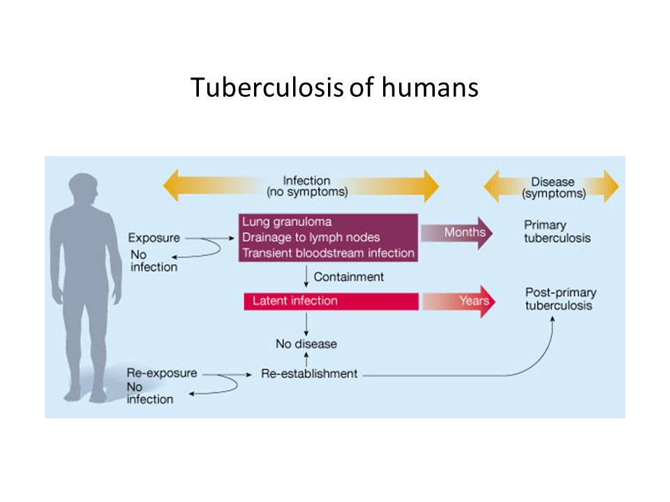 Tuberculosis of humans