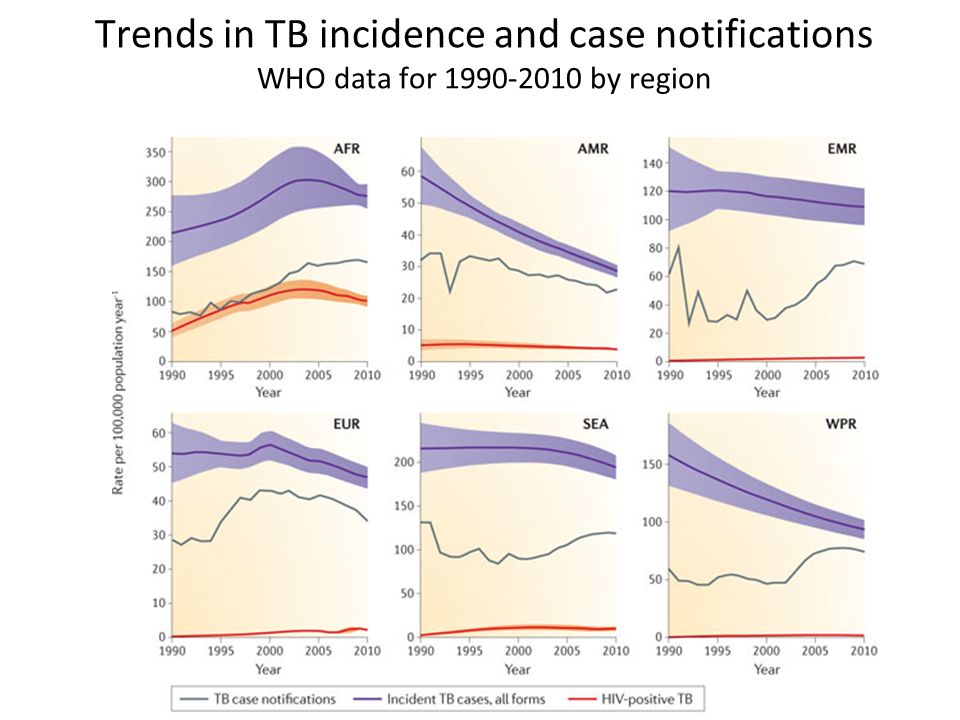Trends in TB incidence and case notifications WHO data for 1990-2010 by region