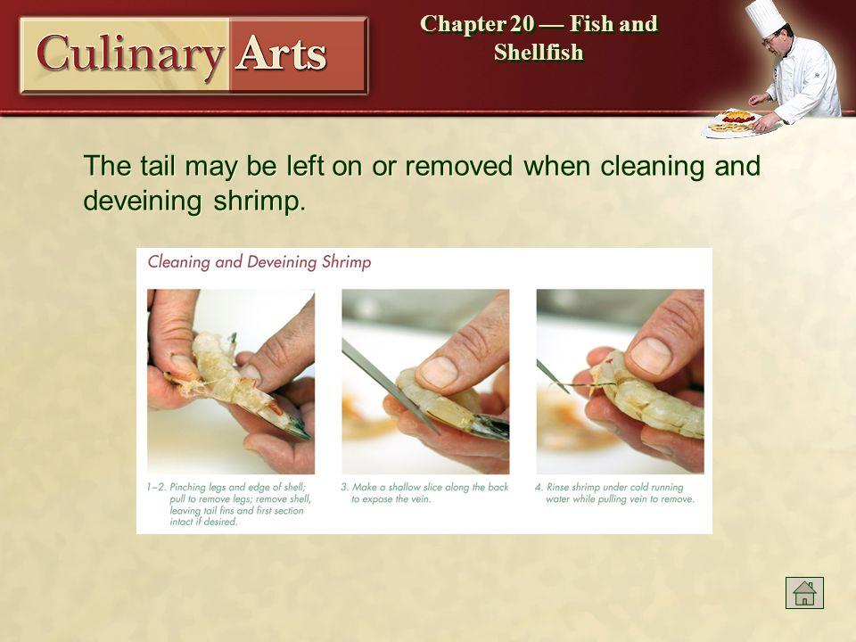 Beautiful Shrimp Anatomy Veins Ideas - Anatomy And Physiology ...