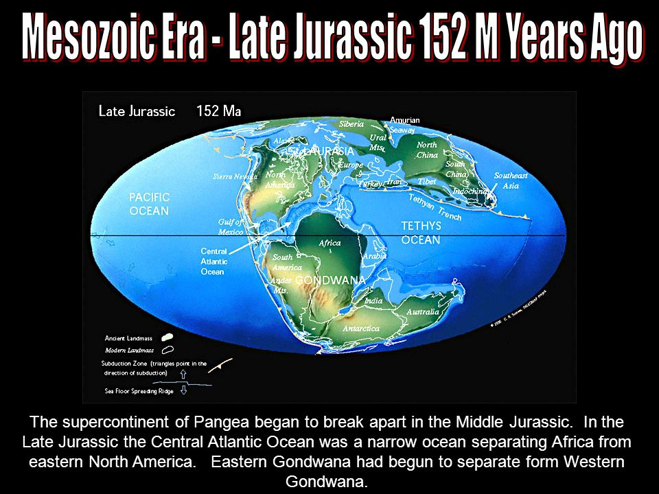 plate tectonics many forces cause the surface of the earth