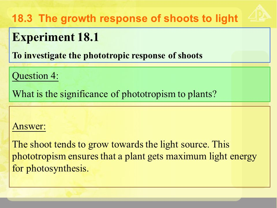 18 Growth Responses Of Green Plants Ppt Video Online