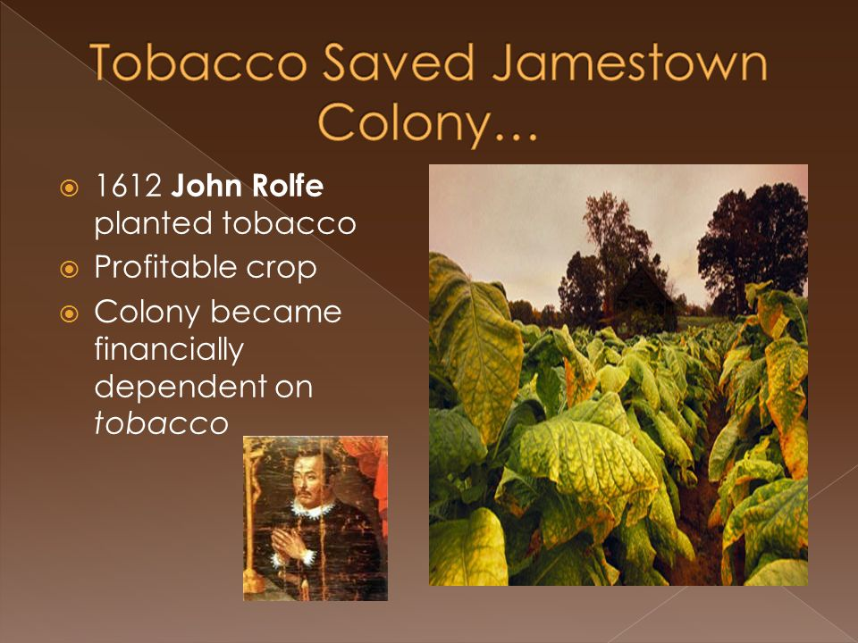 jamestown tobacco bride Jamestown, founded in 1607, was the tobacco trade required warehouses and piers along the shore john smith of jamestown: facts & biography.