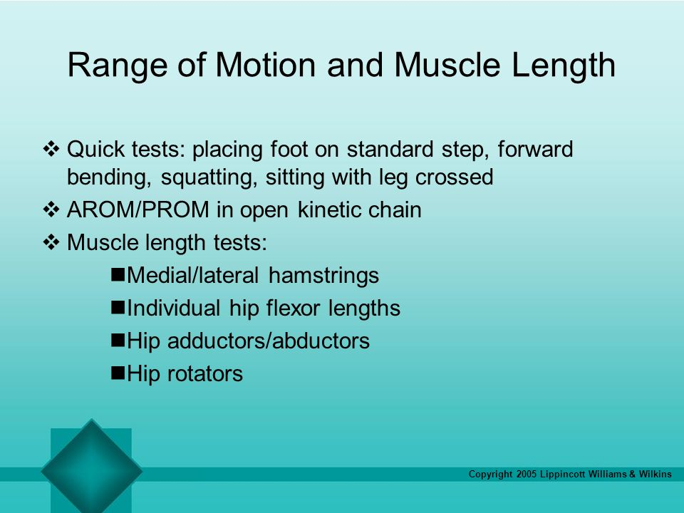 relationship leg length and foot locomotion