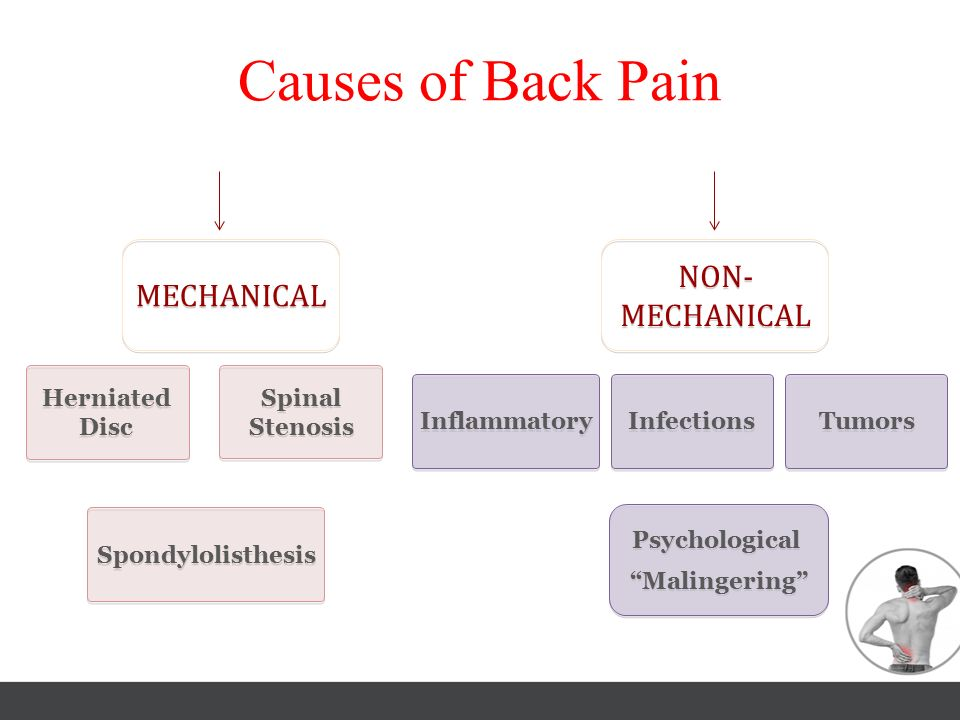 Causes of Back Pain NON-MECHANICAL MECHANICAL Herniated Disc