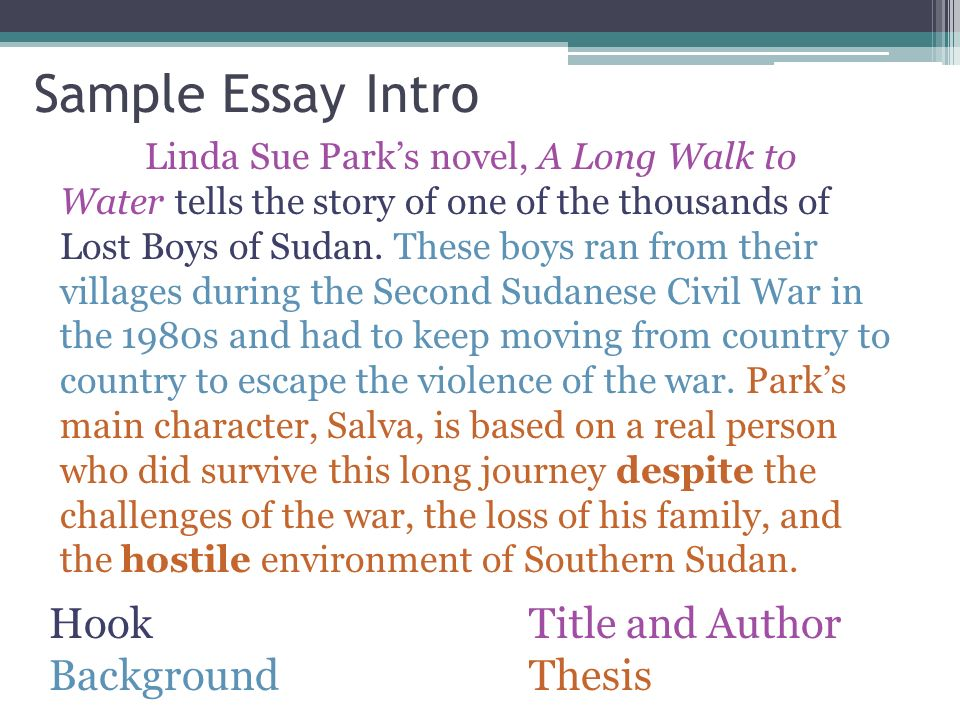lost boys of sudan essay