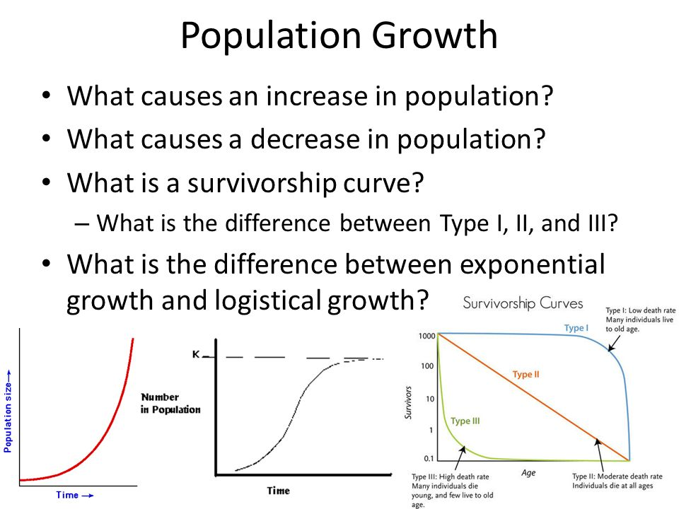 describe the relationship between population growth and food availability