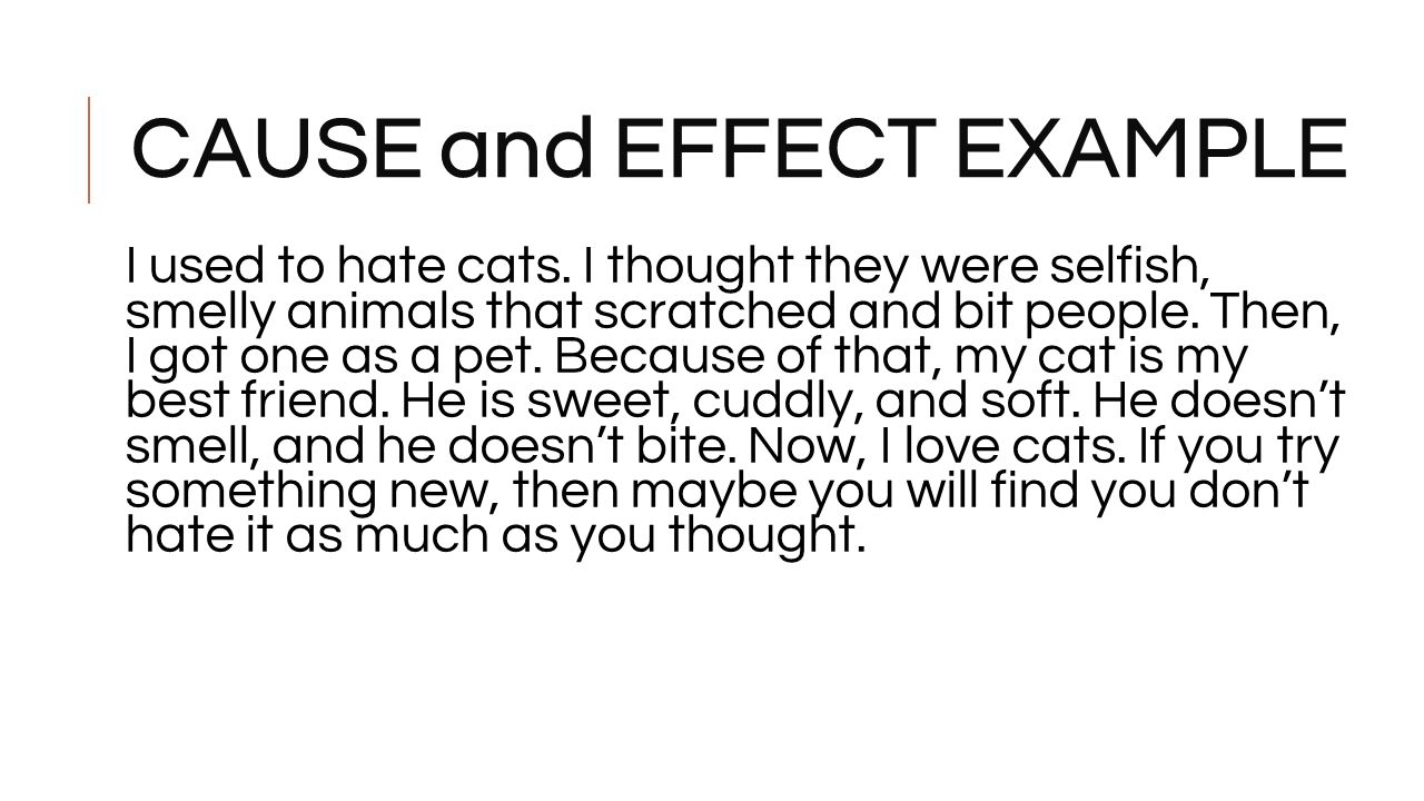 cause and effect essay pets
