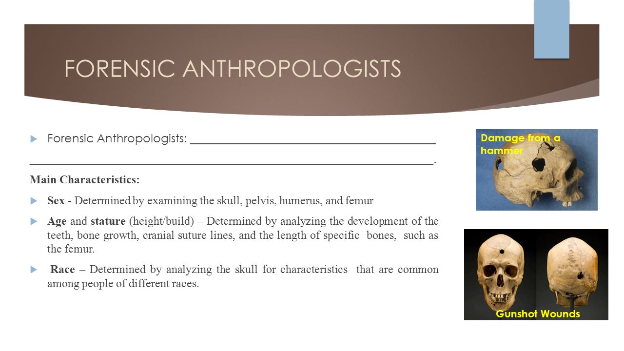an anthropologist among the historians and other essays An anthropologist among the historians and other essays by cohn,bernard s.
