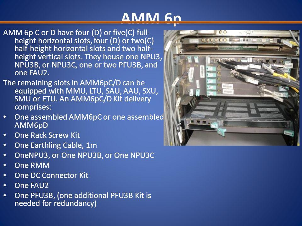AMM 6p